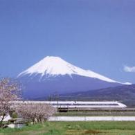Fuji (Fujisan)