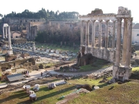 Rom: Forum Romanum, Säulen des Saturntempels