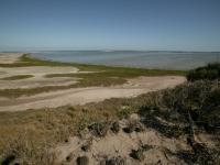 Wide shot of the coast of Laguna Atascosa National Wildlife Refuge.