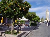 Agadir 23.01.2011 16-42-33