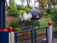 Agadir 27012011 18-48-31