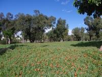 Agadir 28012011 16-11-03