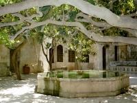Al Azam Palace, in Hama12