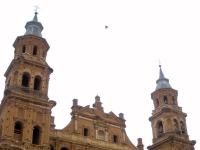 Alfaro - Colegiata de San Miguel 05
