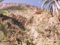 Antiatlas (Souss)