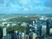 Auckland Domain Sky Tower