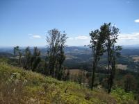 Bald Peak looking southeast