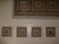 Bardo_Museum_El_Jem_room