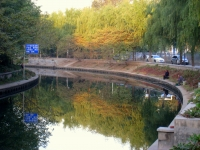 Beijing_Zoo_-_Oct_2009_-_IMG_0944