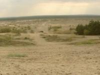 Blendowska_Desert