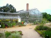 Botanischer_Garten_der_TU_Darmstadt_-_IMG_7032