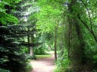 Botanischer_Garten_der_TU_Darmstadt_-_IMG_7040