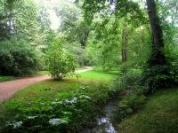 Botanischer_Garten_der_TU_Darmstadt_-_IMG_7042