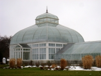 Buffalo and Erie County Botanical Gardens - 1-10 - IMG 3484