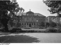 Bundesarchiv_B_145_Bild-F006598-0008,_Frankfurt-Main,_Senckenberg-Institut