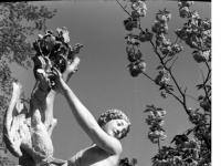 Bundesarchiv_Bild_170-718,_Potsdam,_Sanssouci,_Figurengruppe_an_der_Großen_Fontaine