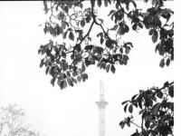 Bundesarchiv_Bild_170-899,_Potsdam,_Park_Sanssouci