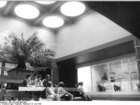 Bundesarchiv_Bild_183-1982-0623-026,_Leipzig,_Zoo,_Affenhaus