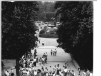Bundesarchiv_Bild_183-1988-0830-010,_Leipzig,_Zoo,_Elefantengehege