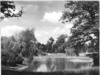Bundesarchiv Bild 183-24839-0004, Berlin, Volkspark Friedrichshain, Teich