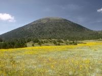 Capulin (Vulkan)