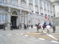 Changing_of_the_Guard,_Royal_Palace_of_Madrid_-_horse_1