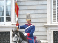 Changing_of_the_Guard,_Royal_Palace_of_Madrid_-_horse_2