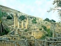 Vista generale del santuario di Apollo
