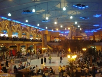 Damascus Ski Land Mall