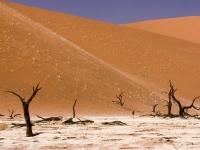 Deadvlei, in Sossusvlei, Namibia