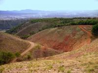 Dehesa_del_Generalife_Park_Granada_(9)