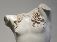 Dionysos Palatino Inv500078