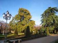 El Parterre, Parque del Buen Retiro, Madrid - view 1