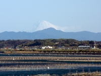 Fuji-Hamanako-DSC1396