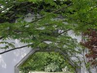 Gärten_der_Welt,_Berlin-Marzahn_017