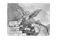 Goya-Guerra (73)