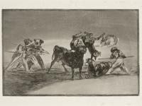 Goya - Barreira dos Mouros Feita com Burros