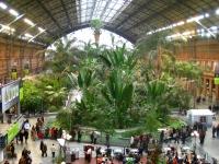 Invernadero de Atocha, Madrid - view 2
