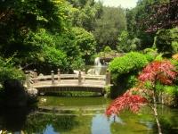 Japanese_Tea_Garden,_San_Mateo,_CA_-_IMG_9111