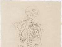 Klimt_-_Zwei_Skelettstudien,_die_obere_mit_Kopf_nach_rechts