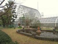 Koishikawa Botanical Gardens, Tokyo - glass house