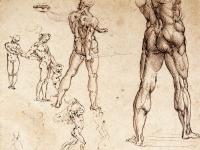 Leonardo_da_vinci,_studi_anatomici_1504-06