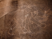 Petroglyphe eines Elefanten, Tadrart Acacus, West-Libyen
