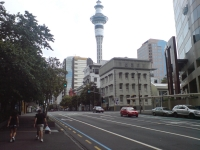 Lower Auckland CBD Car Streetscape