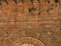 Tlemcen : Moschee in al-Mansura (Ruine)