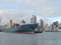 Mol Wellington And Auckland Tenders II