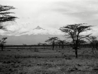 Mount_Kenya_1936