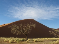 Sossusvlei (Namib), Namibia.