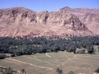 Oase von Tinerhir am Oued Todra, Süden Marokkos