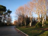 Parque del Buen Retiro, Madrid - misc 2